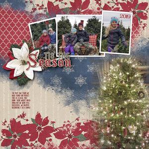 121719_ChristmasColors_ShannonT_600