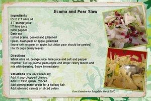 Celestine_Jicama & Pear Slaw