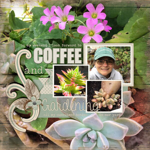Coffee and Gardens!