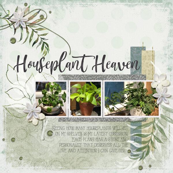 Houseplant Heaven