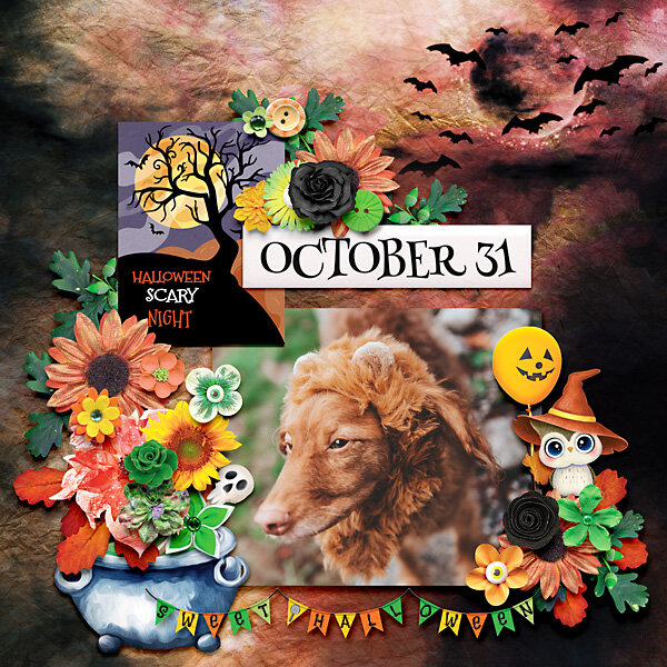 October 31, 2020