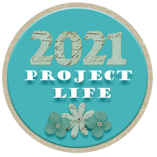 443121351_ProjectLifeblinkie.png.b864872c21581c55565d7796f1486f96.png