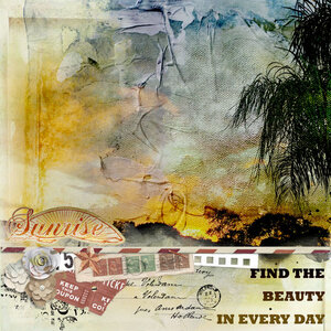 find-beauty