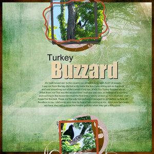 BMU_SSDLA_Fav3_1 Turkey Buzzard