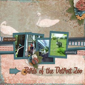Birds-of-Detroit-web