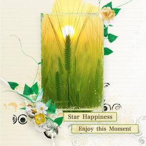 Star Happiness