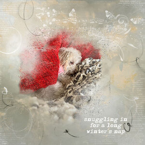 wwc2_20_21_long_winters_nap