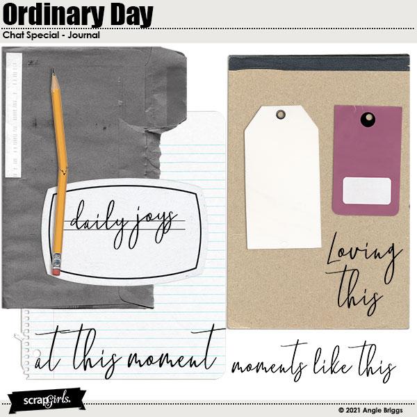 OridinaryDayJournal.jpg
