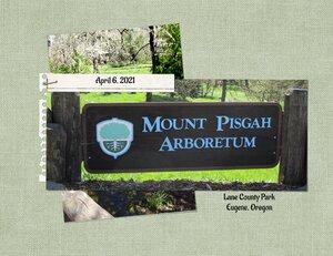 Mt-Pisgah-Arboretum
