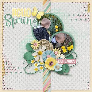 Spring-Flowers-copy1.jpg