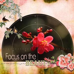 Newsletter Challenge-flower