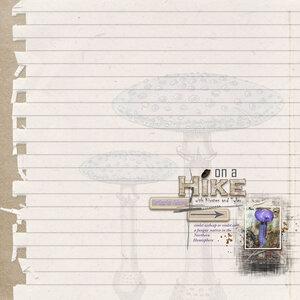 Newsletter Challenge.purple-mushroom