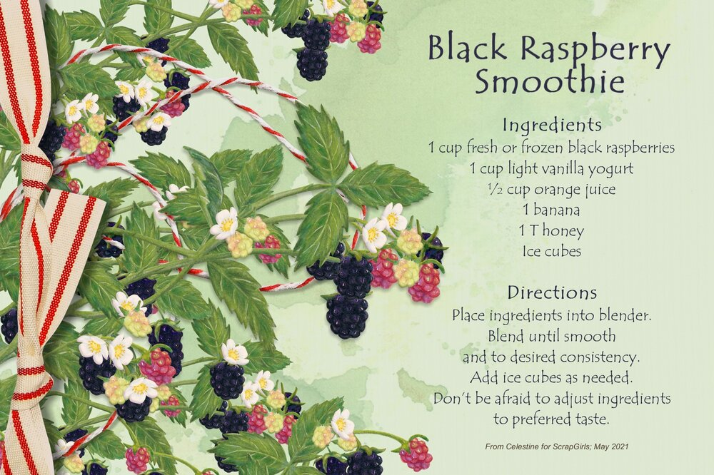 Celestine_Black Raspberry Smoothie