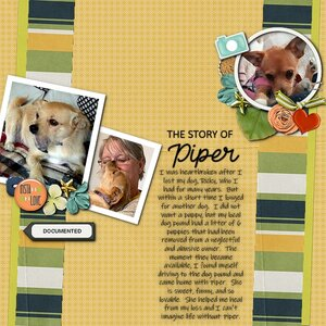 The Story of Piper.jpg