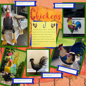 Mo. Ch. #4-Chickenschickens10.