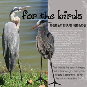 Journaling-birds
