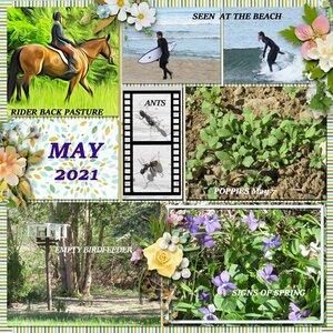 My May
