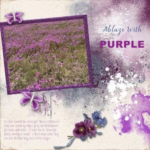 WWC-5-8-purple