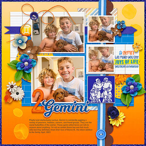 Gemini times 2