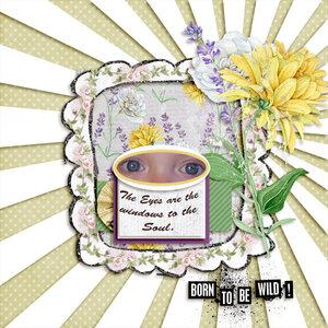 NLC Eyes web.jpg