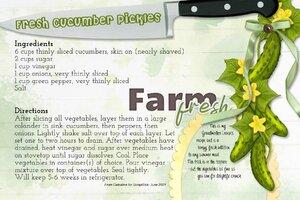 Celestine_Fresh Cucumber Pickles