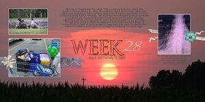 PL Week 28