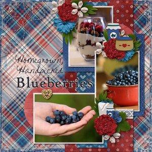 Homegrown, Handpicked Blueberries