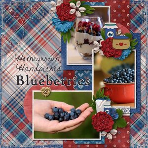 Homegrown Handpicked Blueberries